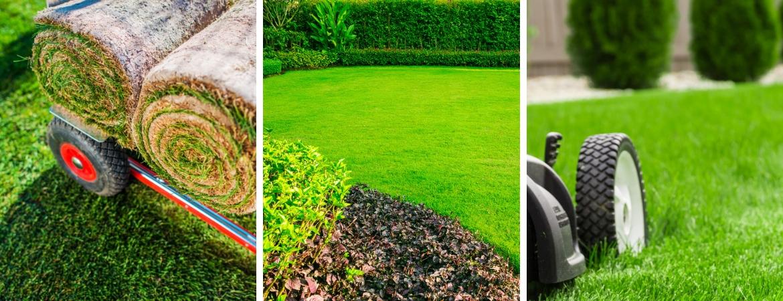 Alles voor een mooi en groen gazon vindt u bij Tuincentrum De Schouw in Houten