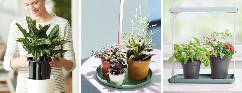 Tuincentrum De Schouw | Houten | Elho | Bloempotten