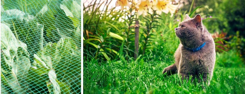 Producten voor gewasbescherming kunt u kopen bij Tuincentrum De Schouw