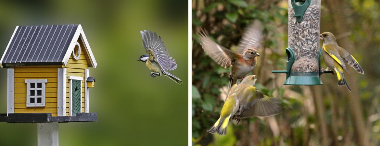 Alle benodigdheden voor vogels in de tuin bij De Schouw in Houten
